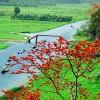 Tour Hà Nội – Chùa Hương 1 Ngày