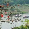 Tham quan – du lịch – trẩy hội Chùa Hương cần biết